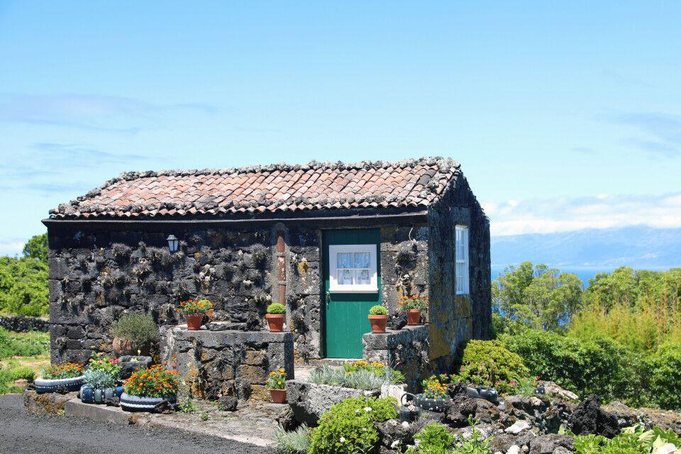 Typisches Steinhaus auf Pico