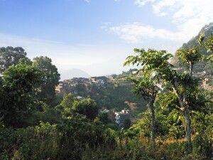Bandipur im saftig grünen Mittelgebirge