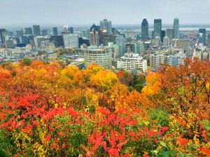 Montreal im Herbst, Blick vom Mont-Royal