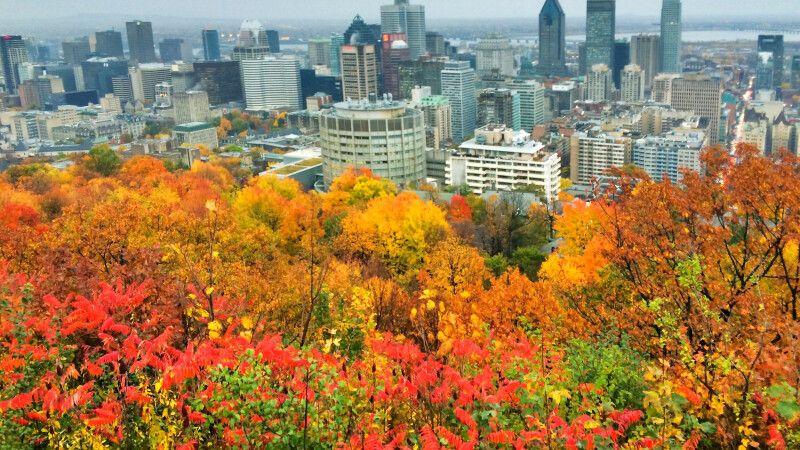 Montreal im Herbst, Blick vom Mont-Royal © Diamir