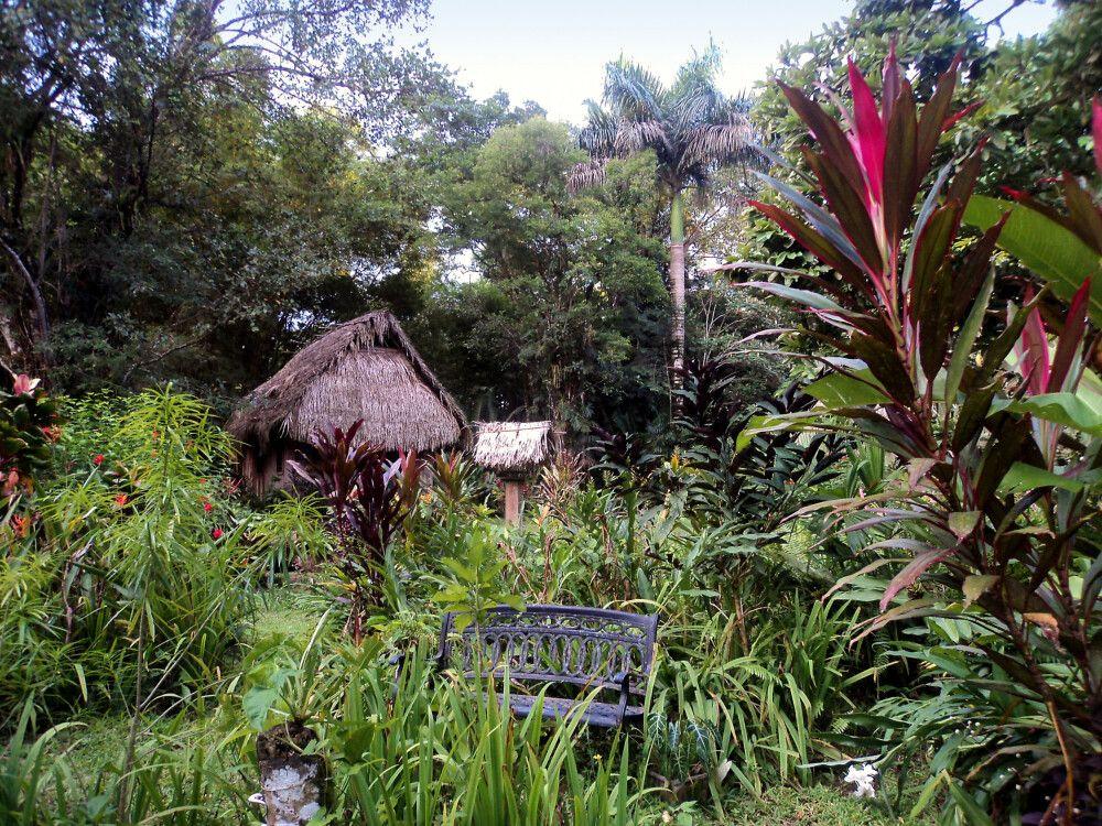 Diese traumhafte Lodge befindet sich inmitten des Regenwaldes und bietet von einem Orchideengarten bis hin zu Ziplining für jeden etwas.