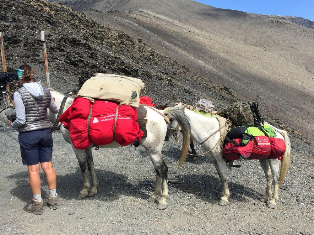 Auch unsere Pferde erreichen sicher den Pass