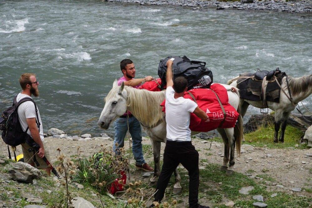 Verladen auf Pferde