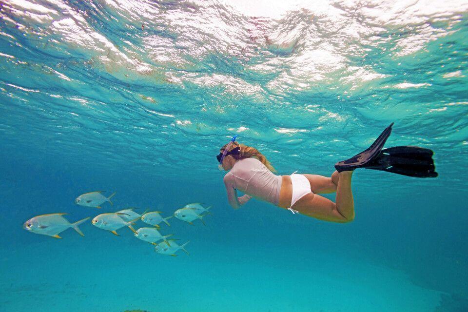 Schnorcheln in der bunten Unterwasserwelt der Sychellen