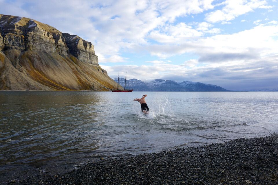 Mutige Schwimmer in Skansbukta