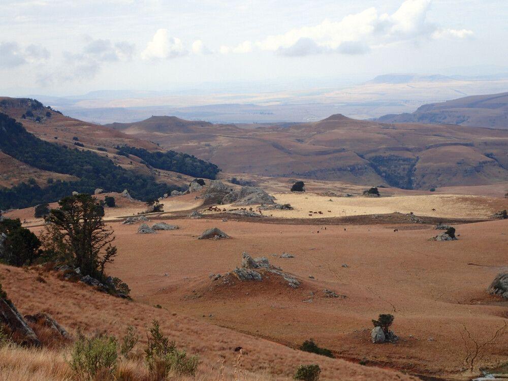 Südafrikas karger Nordosten