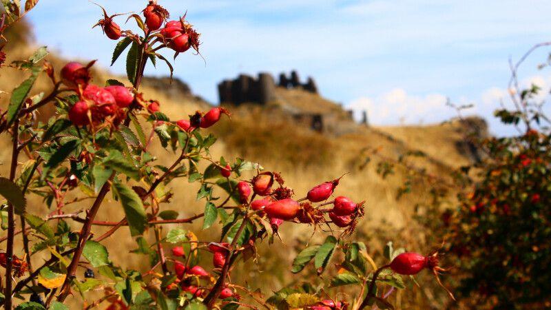 Festung Amberd © Diamir