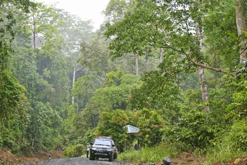 Im Geländewagen durch das Deramakot Forest Reserve