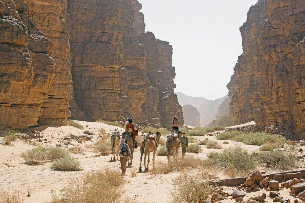 mit dem Kamel durch die Canyons der Sahara