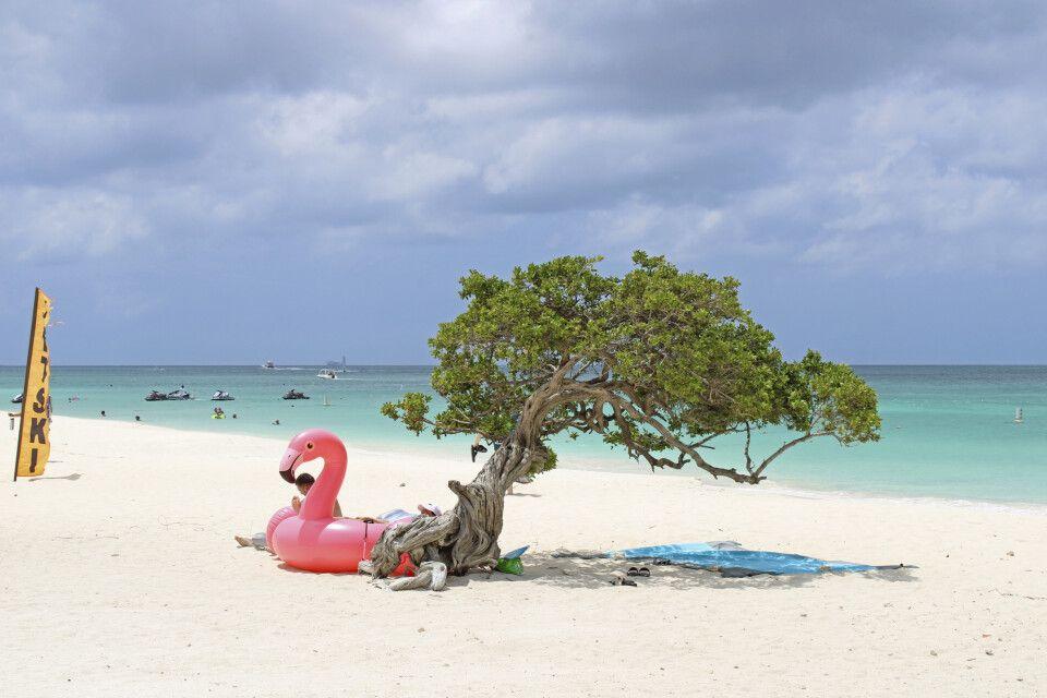 Eagel Beach auf Aruba