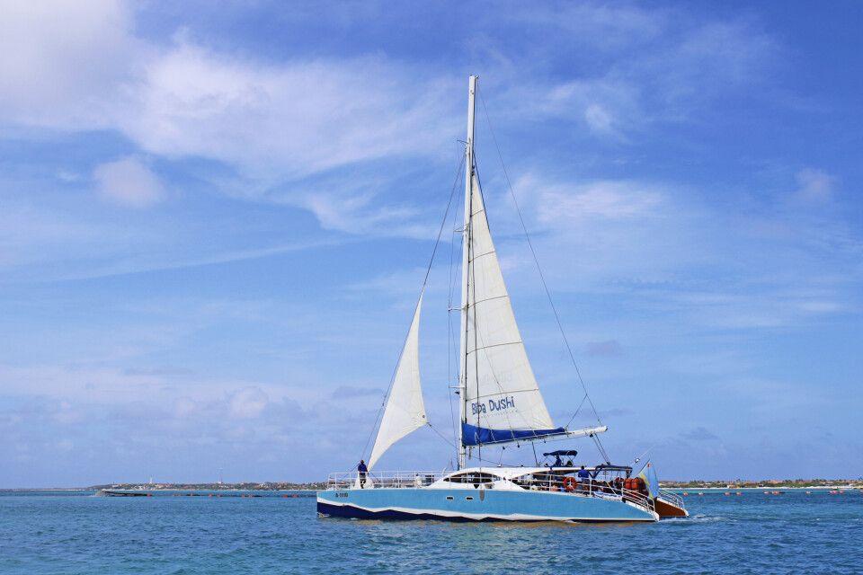 Per Katamaran die Insel Aruba umsegeln