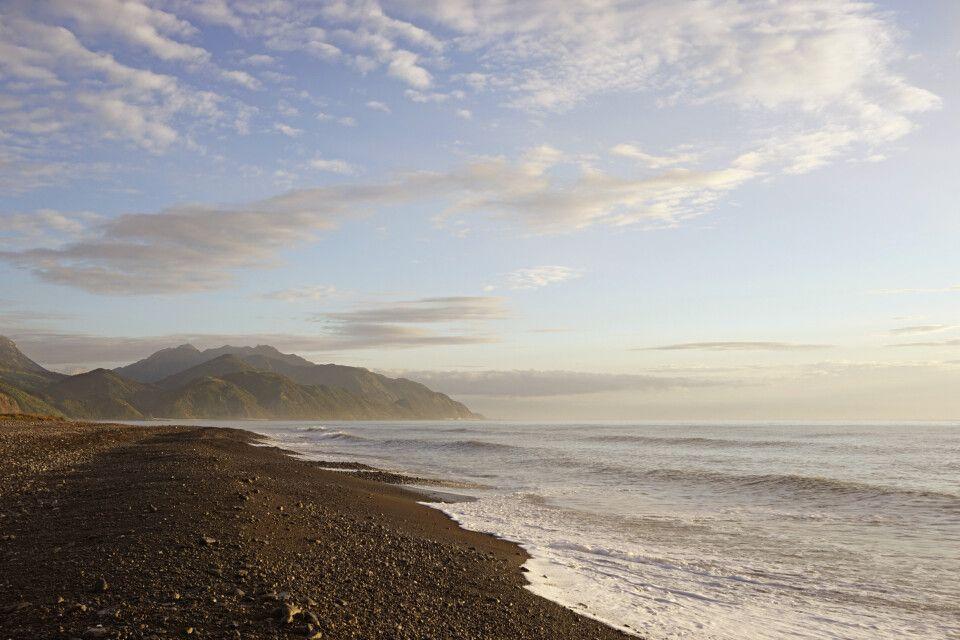 Wilde Küste der Südinsel bei Kaikoura