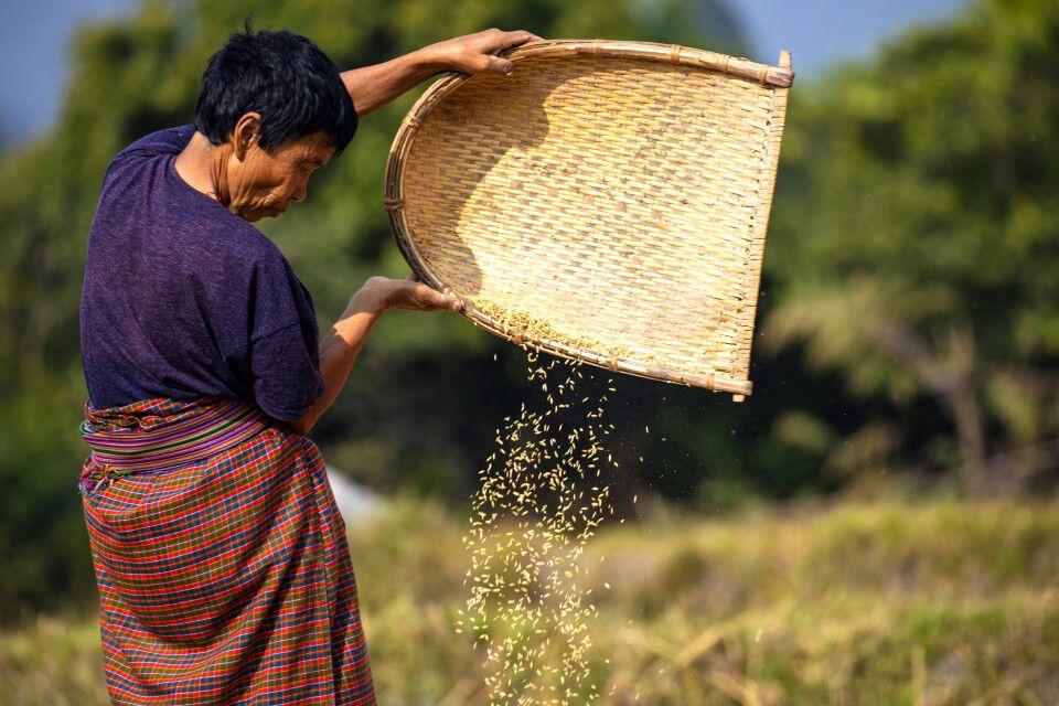 Bäuerin auf dem Land in Bhutan