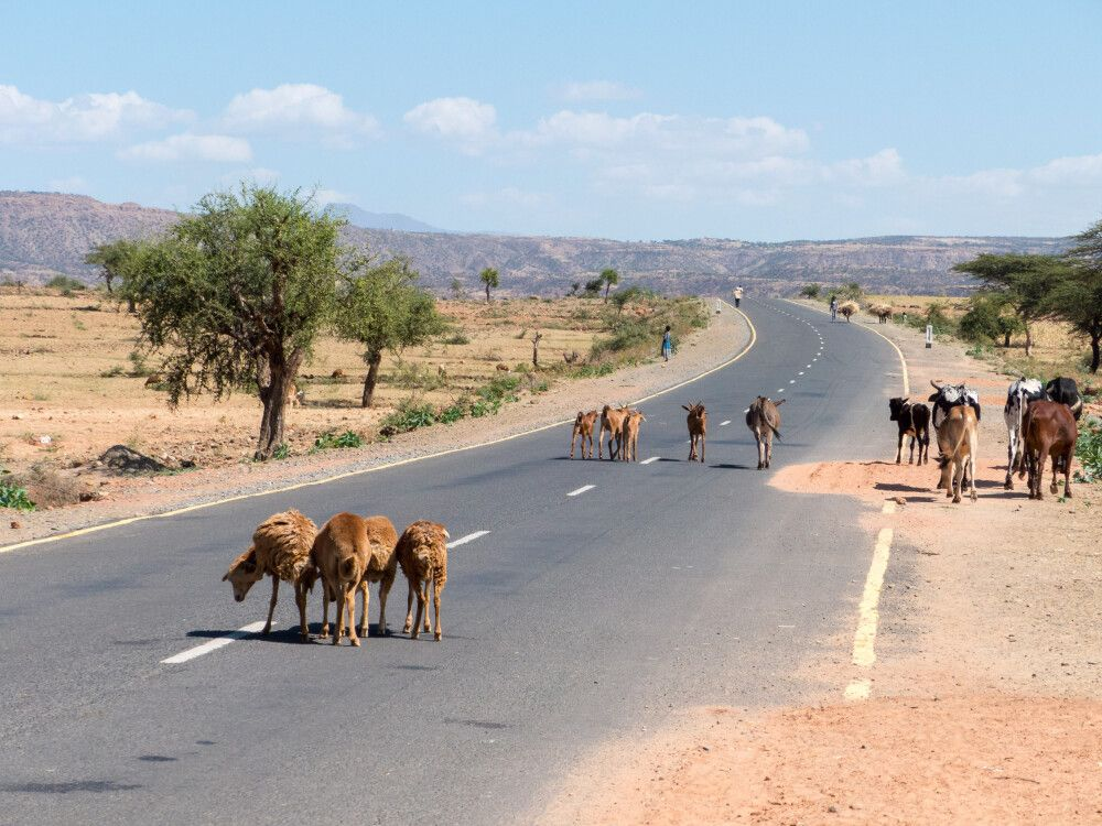 Strassenszenen aus Nordäthiopien