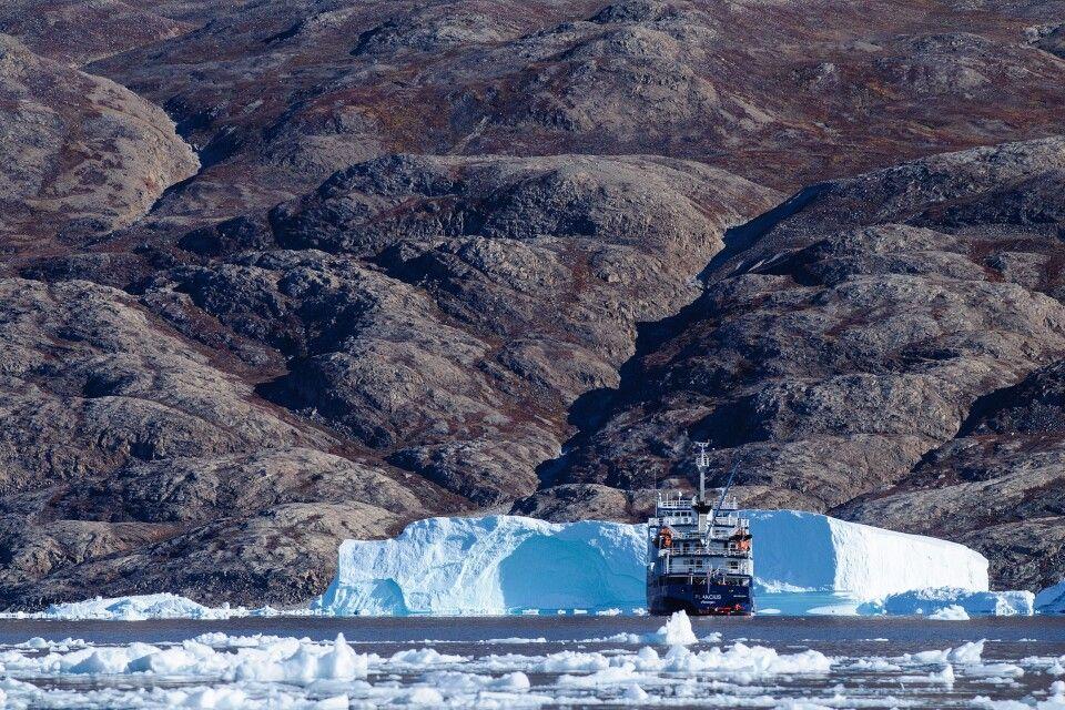 Eisberge vor der Kulisse des Scoresby-Sundes