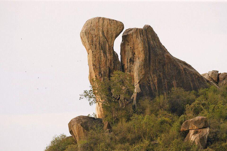 Felsen in der Serengeti