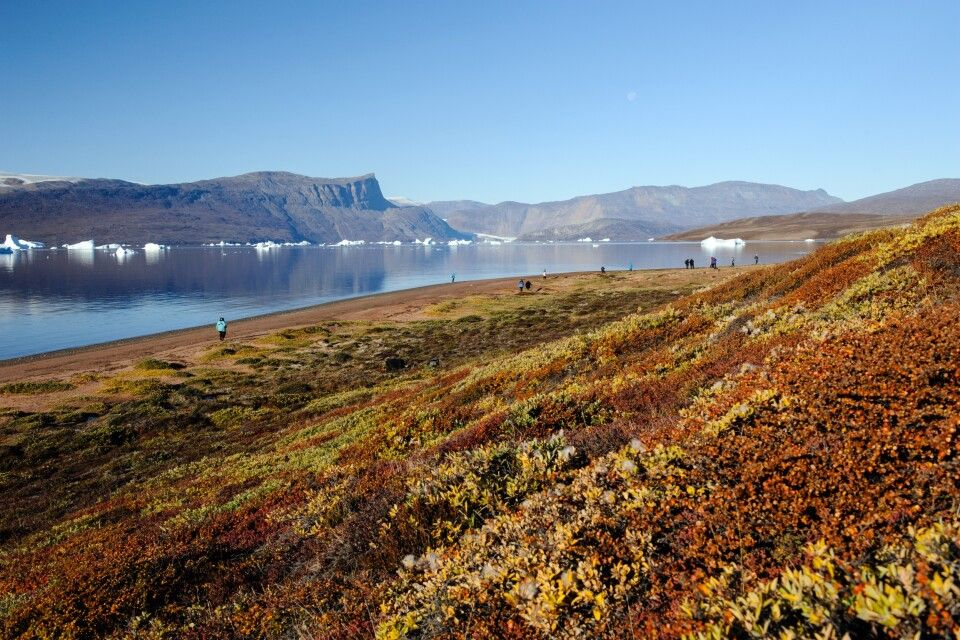 Ostgrönland im Herbstgewand