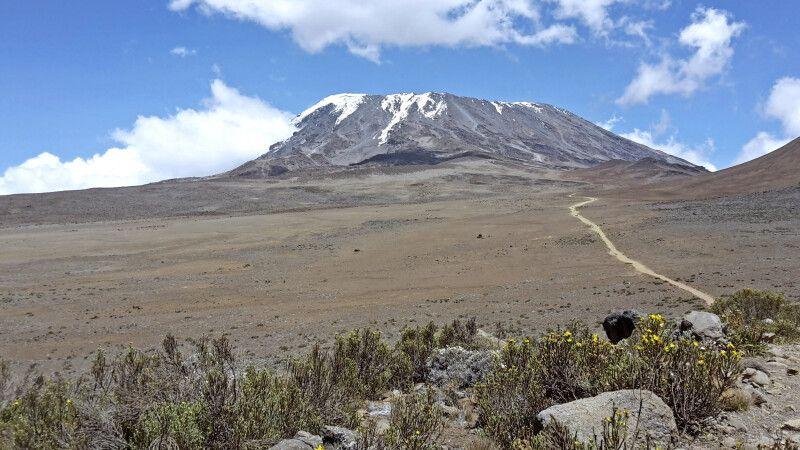 Der Weg zur Kibo Hut mit stetigem Blick auf Ihr nächstes Ziel, der Kibo © Diamir