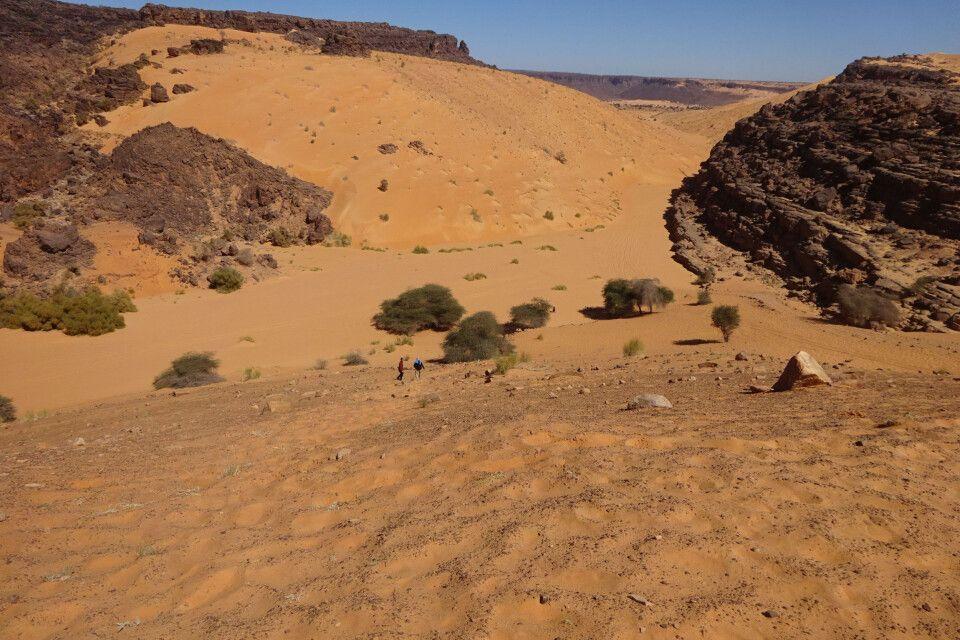 Sand- und Felsformationen der Sahara