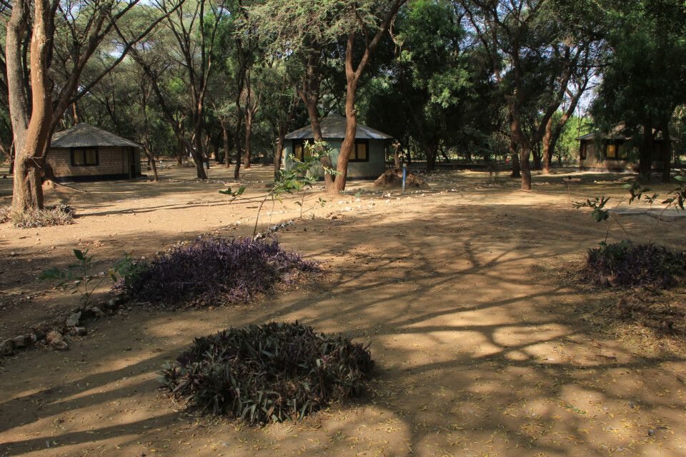 Mango Camp in Kapoeta