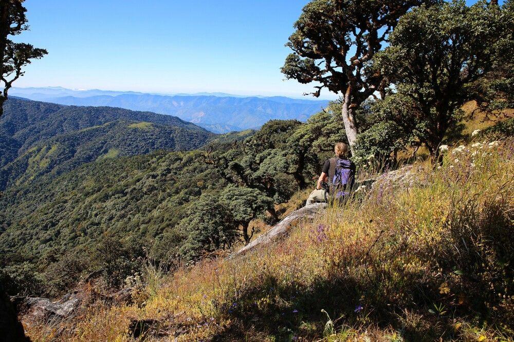 Wandern am Mt. Victoria