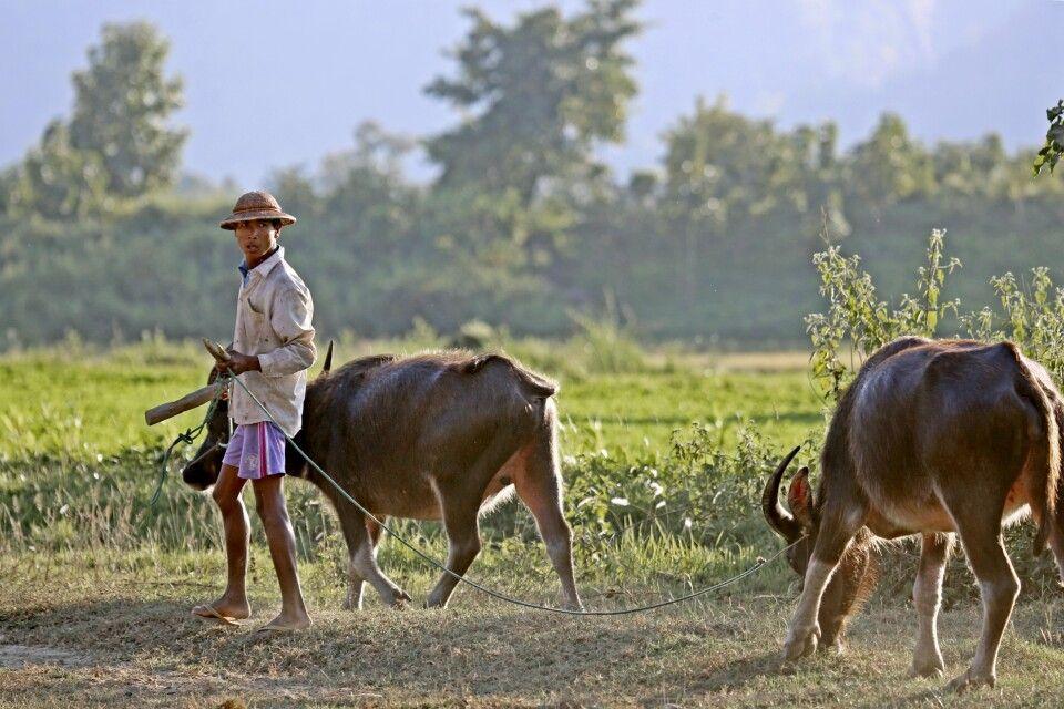 Dorfleben in Kalay