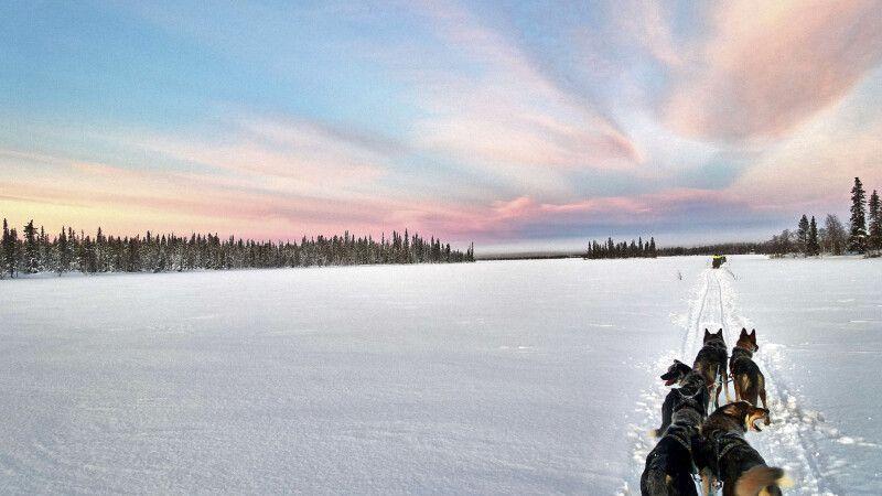 Verschneites weites Finnland © Diamir