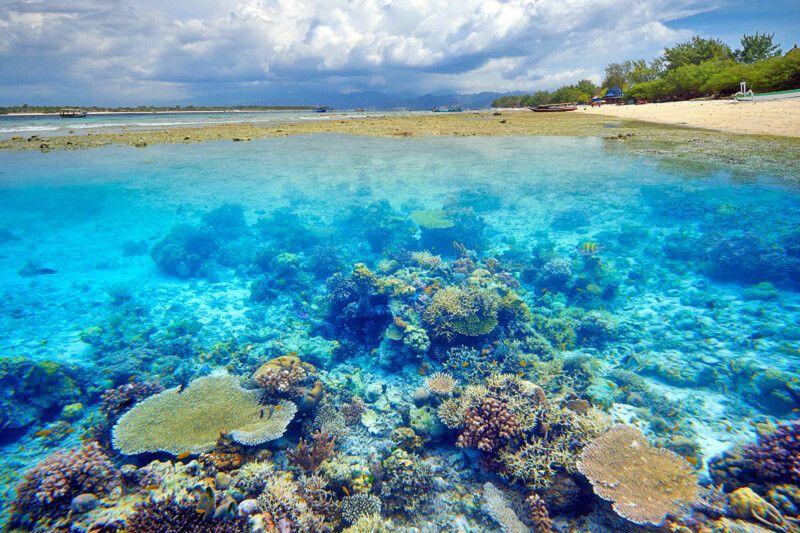 Korallenriff vor Gili Air