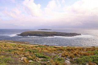 Kangaroo Island - am Cape du Couedic