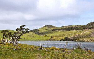 Llagune im Hochland von Pico