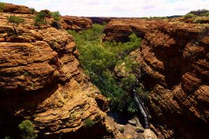 Schlucht des Kings Canyon im Watarrka-Nationalpark, NT