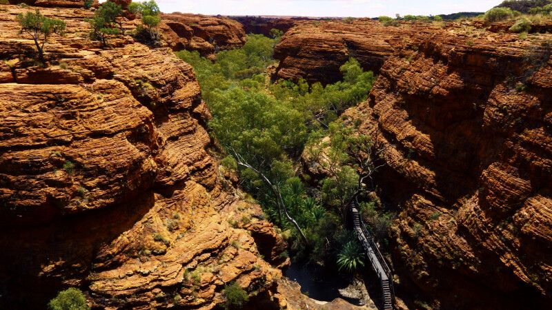 Schlucht des Kings Canyon im Watarrka-Nationalpark, NT © Diamir