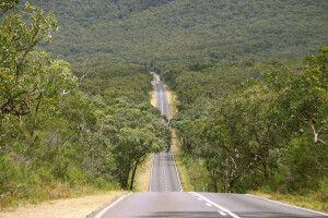 Straße durch den Grampians-Nationalpark, Victoria