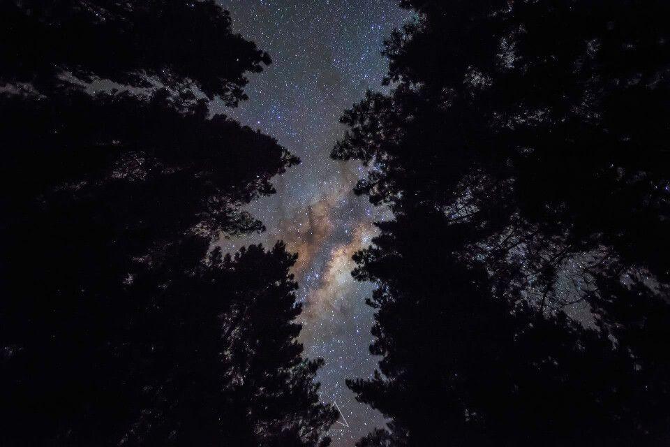 Nachthimmel über dem Lake Mc Laren