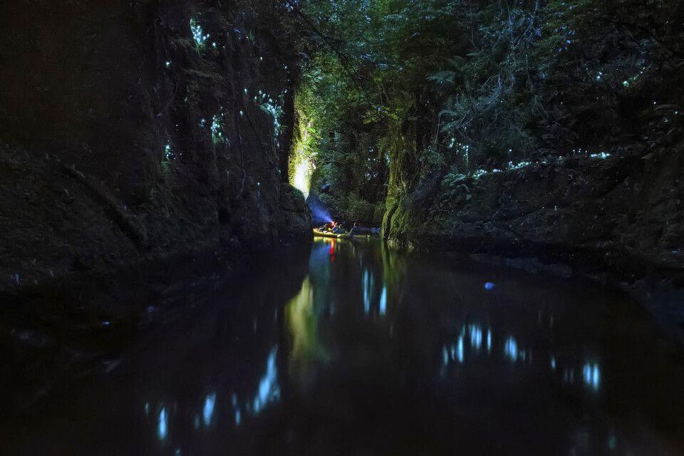 Nachtfahrt im Kajak durch die Glühwürmchen-Klamm