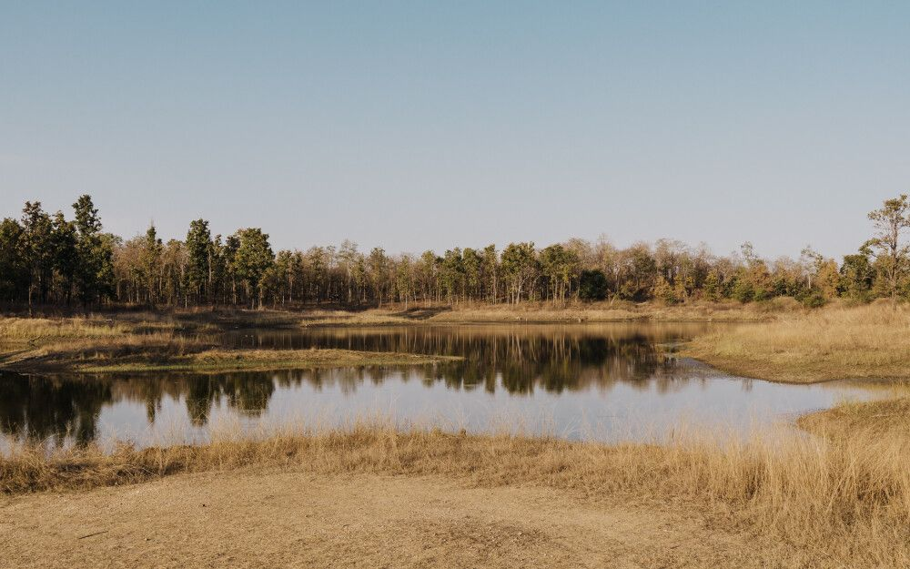 Pench, Tadoba-Nationalpark