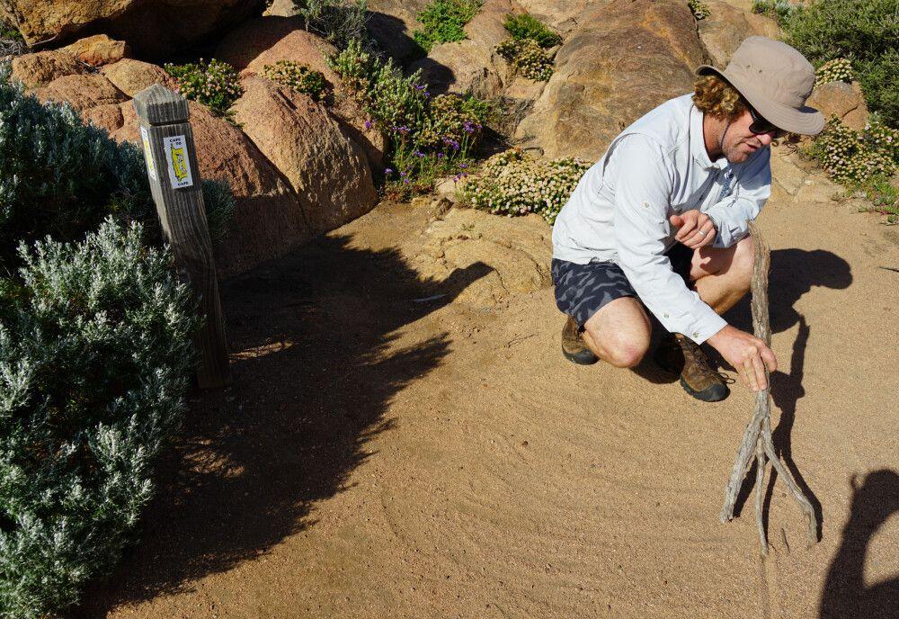 Mit einem lokalen Guide lässt sich die herrliche Landschaft Australiens noch intensiver erleben.