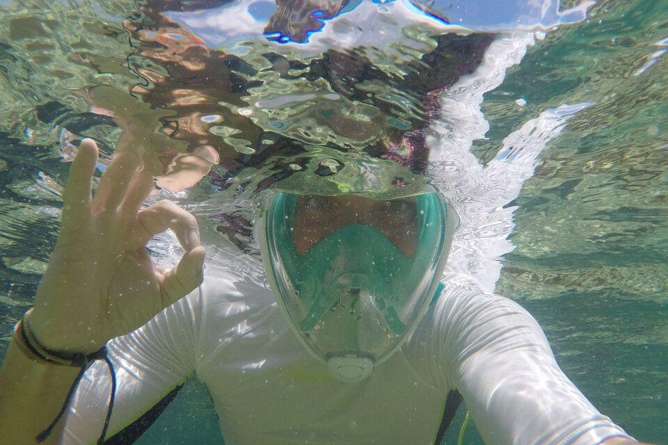 Die Unterwasserwelt konnten wir beim Schnorcheln erkunden.