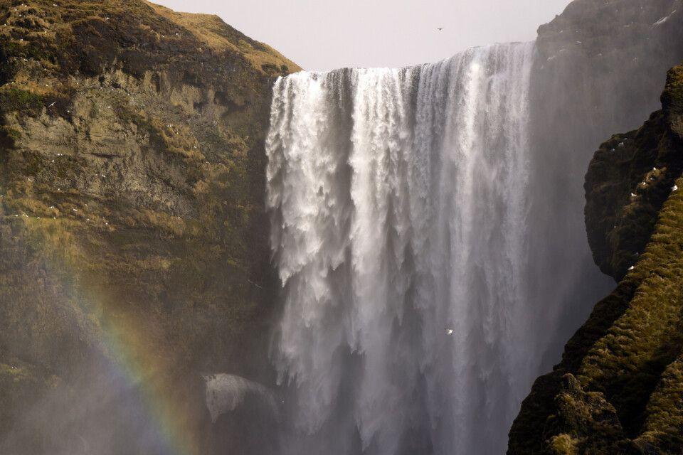 Skógafoss mit Regenbogen