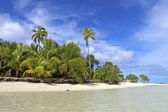 Am Strand von Barefoot Island