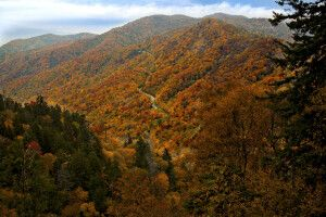 Herbst in den Great Smoky Mountains bei Sevierville, Tennessee