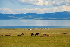 Typisch Kirgistan: Pferde, Jurten, Weite