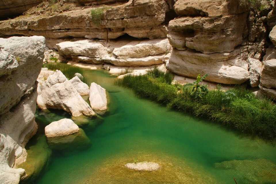 in einem der zahlreichen Wadis