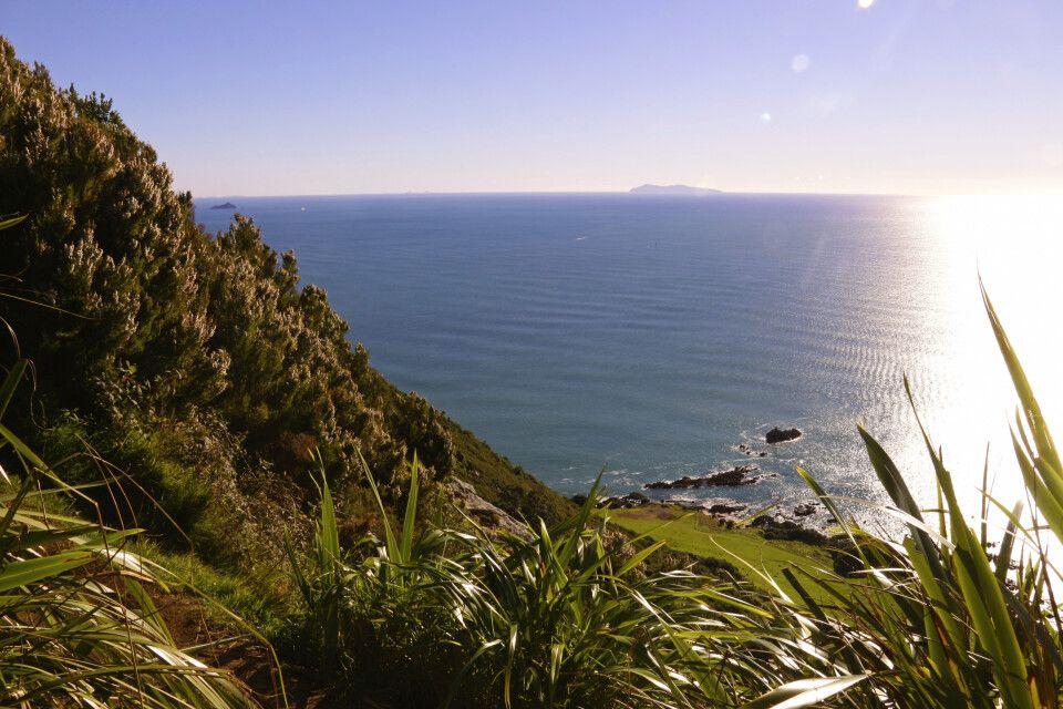 White Island am Horizont in der Bay of Plenty