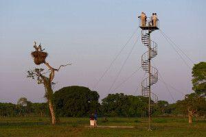 Beobachtungsturm der Southwild Pantanal Lodge