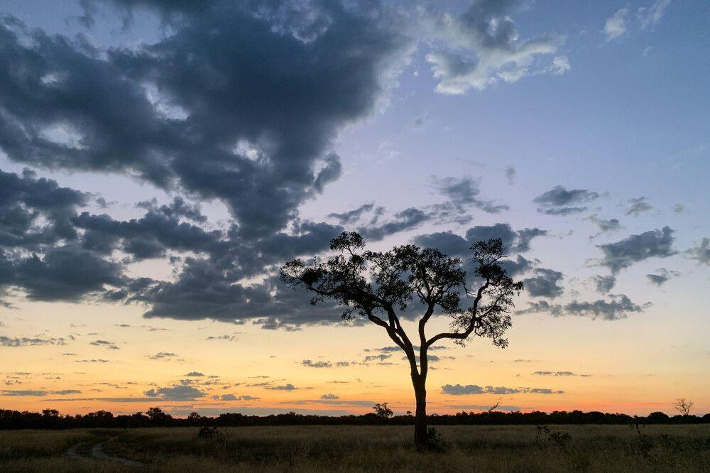 Sonnenuntergang in Savuti, Chobe National Park, Botswana