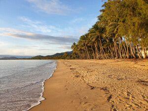 Perfekter Strand nördlich von Cairns nahe Palm Cove