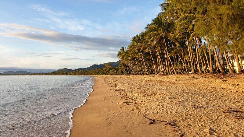 Perfekter Strand nördlich von Cairns nahe Palm Cove © Diamir