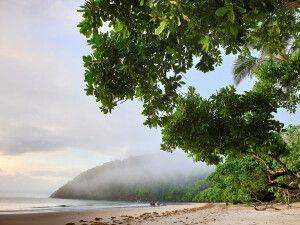 Mission Beach ist ein kleines Dorf am Korallenmeer in Queensland, Australien - Strand