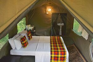 Big Game Camp - geräumiges Hauszelt mit eigenem Bad
